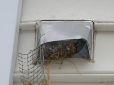 Dryer Vent Cleaning Maryland T Amp D Professional Vent Cleaners